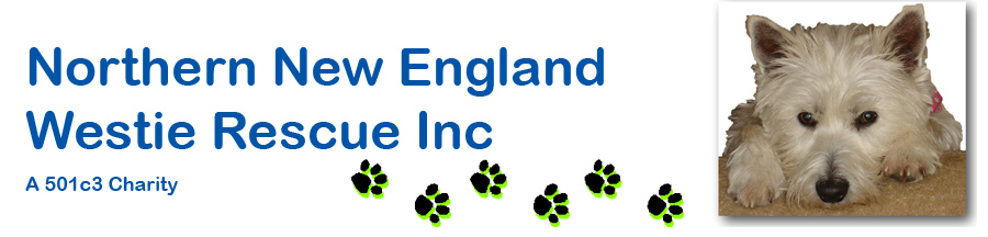 Northern New England Westie Rescue Inc